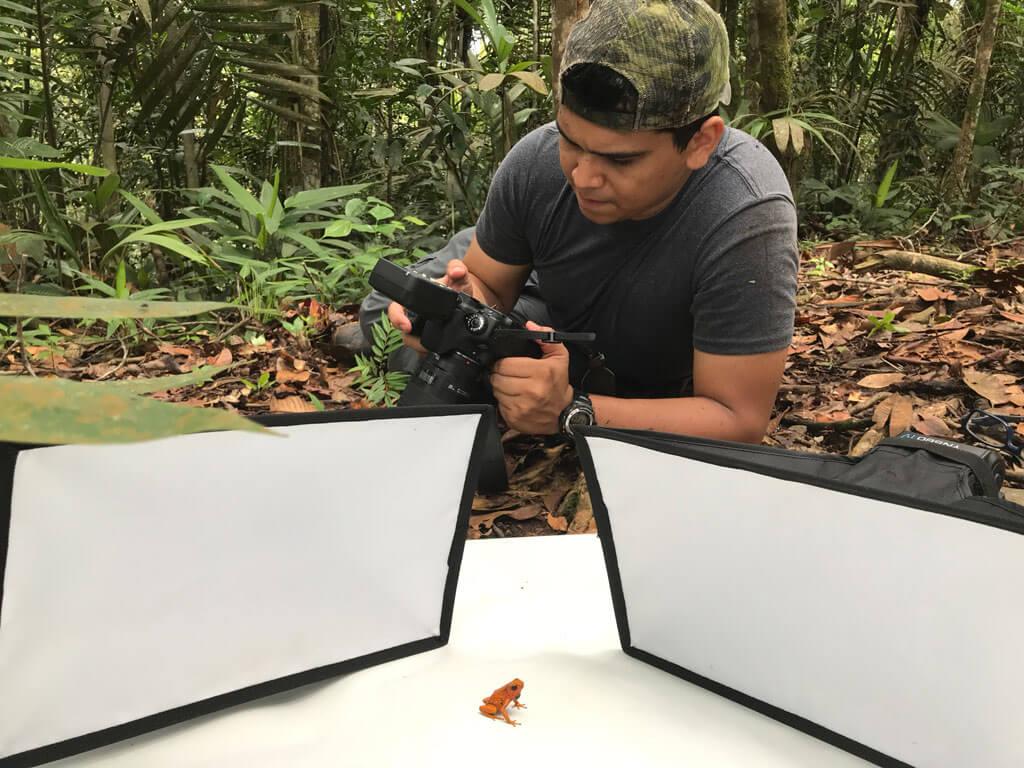 Director de Investigación - Juan Sebastian Forero - Fundación Alianza Natural
