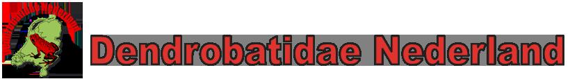 DENDROBATIDAE NEDERLAND