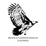 PROYECTO GRANDES RAPACES